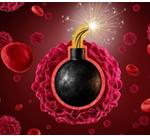 شاید کد مرگ سلول، جایگزین شیمی درمانی شود